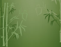 De Schaduwen van het bamboe Stock Fotografie