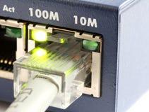 De schakelaar van het netwerk met grijze ethernetkabel stock afbeeldingen