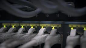 De schakelaar van het netwerkpaneel met het geleide opvlammen stock videobeelden