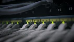 De schakelaar van het netwerkpaneel met het groene geleide opvlammen stock video