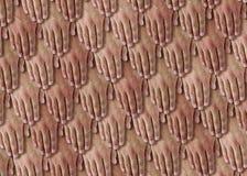 De Schalen van handen stock fotografie