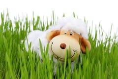 De schapen van Pasen Stock Foto's