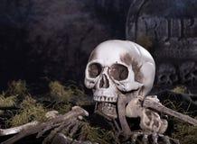 De Schedel en de Beenderen van Halloween Royalty-vrije Stock Foto