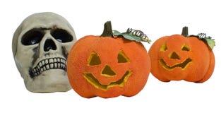 De schedel en de pompoenen van Halloween Stock Afbeelding