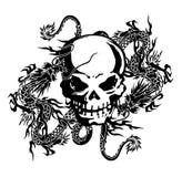 De schedel en een draak Stock Afbeeldingen