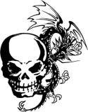 De schedel en een draak Stock Fotografie