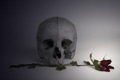 De schedel en vernietigd nam toe Royalty-vrije Stock Foto