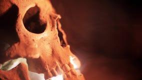 De schedel in de rook in dark De menselijke schedel gloeit van de binnenkant stock videobeelden