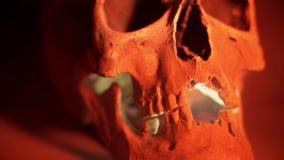 De schedel in rook op zwarte achtergrond De rode menselijke schedel gloeit van de binnenkant stock videobeelden