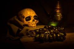 De schedel van de stillevenkunst Stock Afbeelding