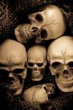 De schedel van de stillevenmilitair Royalty-vrije Stock Foto