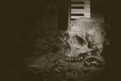De schedel van de stillevenmuziek Royalty-vrije Stock Foto