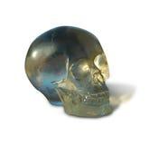 De schedel van het kristal Stock Afbeeldingen