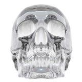 De schedel van het kristal Stock Foto