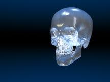 De schedel van het kristal Stock Fotografie