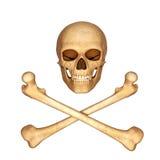 De schedel van het skelet met beenderen die met wit worden geïsoleerd Royalty-vrije Stock Foto's