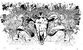 De schedelillustratie van de ram Stock Afbeeldingen