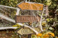 De Schedels en de Decoratie van Halloween Royalty-vrije Stock Afbeelding