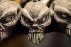 De schedels sluiten omhoog stock afbeeldingen