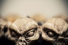 De schedels sluiten omhoog royalty-vrije stock foto