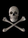 De schedelsymbool van de gifstof of van het vergift royalty-vrije stock afbeelding