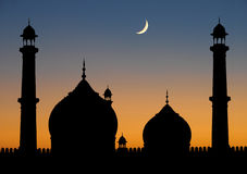 De schemering van de Moskee van Delhi stock afbeelding