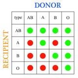 De schenking van het bloed Royalty-vrije Stock Foto's