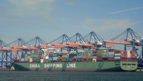 De schepen van de container in haven stock footage