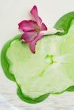 De schets abstract onduidelijk beeld van de bloemkleur Royalty-vrije Stock Foto's