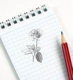 De schets van de bloem in potlood Royalty-vrije Stock Afbeeldingen