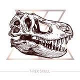 De Schets van de dinosaurusschedel van TRex-Schedel vector illustratie