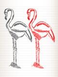 De schets van de flamingo Stock Afbeeldingen
