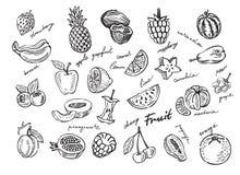 De schets van de fruitstapel Royalty-vrije Stock Foto