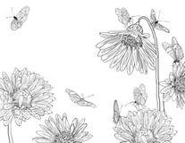 De schets van de tuin Stock Afbeelding