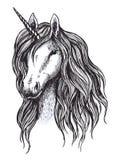 De schets van het eenhoornpaard van magisch dier met hoorn vector illustratie