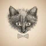 De schets van het kattengezicht Royalty-vrije Stock Afbeeldingen
