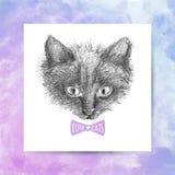 De schets van het kattengezicht Stock Fotografie