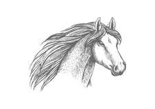 De schets van het paardhoofd van rasechte Arabische merrie vector illustratie