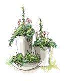 De schets van tuinelementen Stock Foto