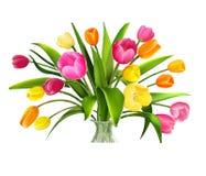 De schets van tulpen Stock Foto's