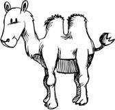 De schetsmatige VectorIllustratie van de Kameel Stock Foto's