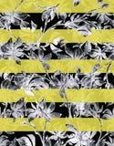 De schetsreeks van de bloemwaterverf Stock Afbeelding