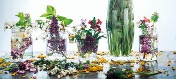 De schilderachtige boeketten van de kleurrijke lente bloeit in de flessen van glasvazen, die zich op een rij op een lichte houten Royalty-vrije Stock Foto's