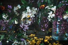 De schilderachtige boeketten van de kleurrijke lente bloeit in de flessen van glasvazen op een donkere houten lijst als achtergro Royalty-vrije Stock Foto's