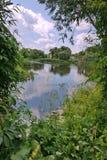 De schilderachtige groene aard van het platteland met een rivier die tussen de groene kusten van de daken van huizen stromen Stock Foto's