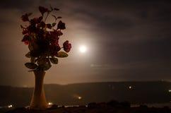 De schilderachtige purpere lente bloeit in glasvaas die zich op een rij op een donkere achtergrond met sterren en maan bevinden Royalty-vrije Stock Afbeelding