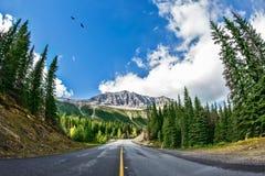 De schilderachtige weg in Yoho National Park Stock Fotografie