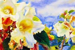 De schilderijen van het waterverflandschap kleurrijk van Herald trompetbloem Stock Foto