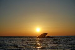 De schipbreuk in Kaap mag Royalty-vrije Stock Fotografie