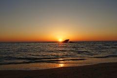 De schipbreuk in Kaap mag Stock Fotografie